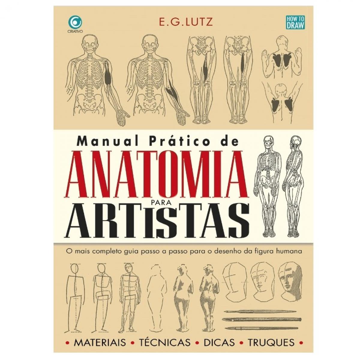 Moderno Anatomía Tigre Para Los Artistas Imágenes - Imágenes de ...