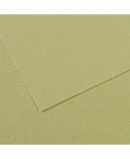 Papel Canson Mi-Teintes 480 50x65cm