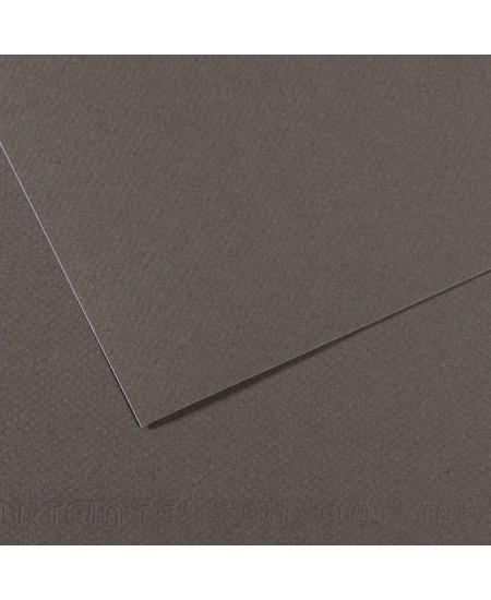 Papel Canson Mi-Teintes 345 50x65cm