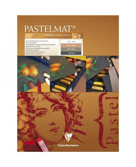 Papel Para Pastel Pastelmat 30x40cm Clairefontaine Nº2