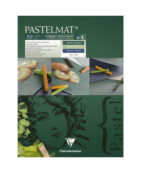 Papel Para Pastel Pastelmat 30x40cm Clairefontaine Nº5