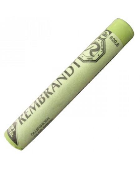 Pastel Seco Rembrandt  620.8 Olive Green