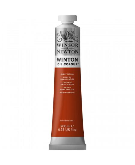 Tinta Óleo Winton 200ml Winsor & Newton 074 Burnt Sienna