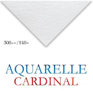 Papel Para Aquarela Cardinal 50x65cm 300g/m² Clairefontaine