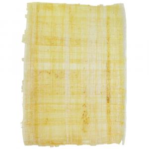 Papel Papiro Papiro Egípcio Cru