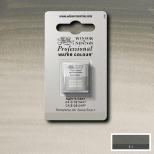 Tinta Aquarela Profissional Winsor & Newton Pastilha S1 217 Davy's Gray