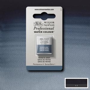Tinta Aquarela Profissional Winsor & Newton Pastilha S1 465 Payne's Gray