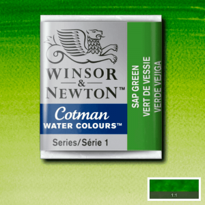 Aquarela Cotman W&N Pastilha 599 Sap Green