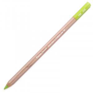 Lápis Pastel Caran D'Ache 232 Middle Moss Green