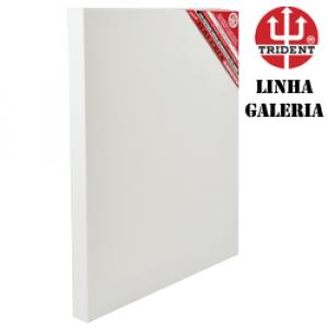 Painel Para Pintura Profissional Galeria 050x050x5