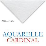 Papel Para Aquarela Cardinal 50x65cm 300g/m² Clairefontaine (Unidade)