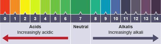 pH Papel